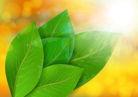 Illustration of green leaves with bokeh background