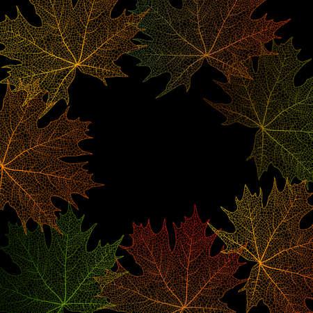 fall leaf: Illustration of colorful maple leaves frame on black background