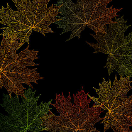 leaves frame: Ilustraci�n de colorido las hojas de arce marco sobre fondo negro