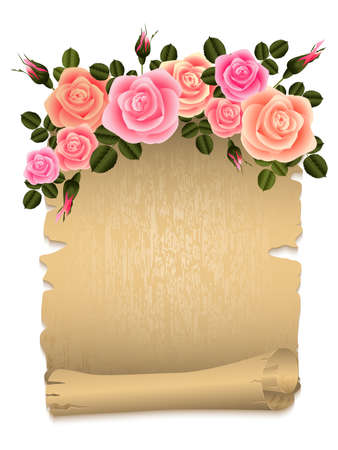 scroll border: Illustration of roses border and old paper scroll isolated