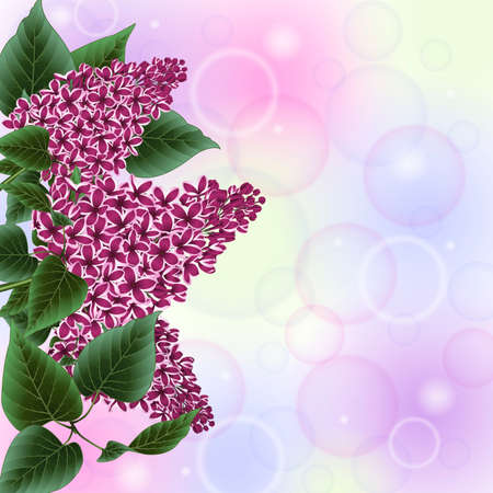 Illustration of lilac flowers border with bokeh background