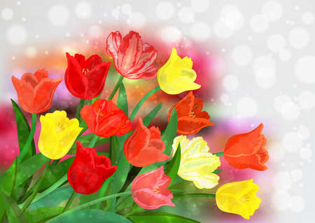 Illustration of colorful tulip flowers with bokeh background
