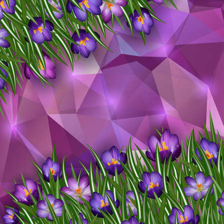 Illustration of purple crocus flowers with triangle background