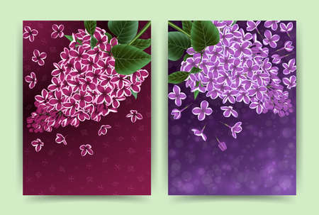 Illustration of card templates with lilac flowers Illustration