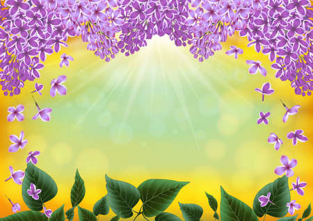 festal: Illustration of lilac flowers and leaves with sunny bokeh background Illustration
