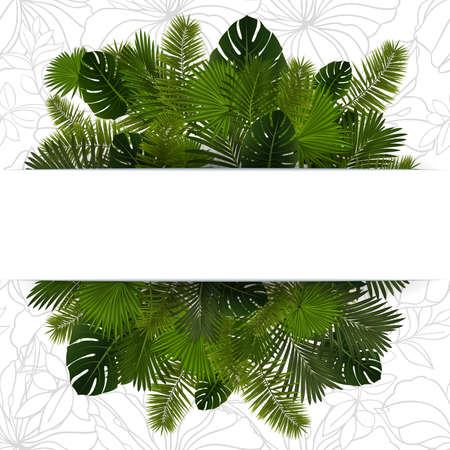 Illustration of various palm leaves with horizontal banner and floral background Illustration