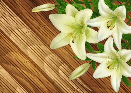 Illustration of white lily flowers on wood background