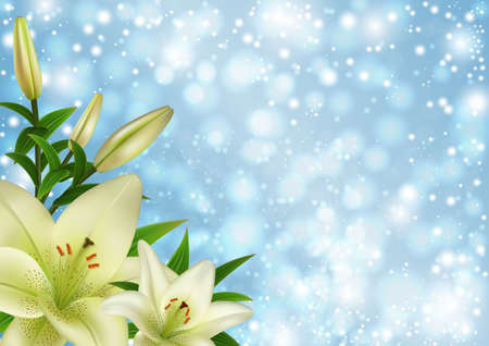 Illustration of white lily flowers on glitter background