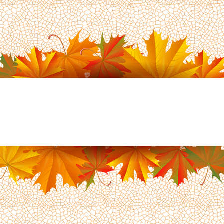 Illustration of autumn maple leaves with reticular background and paper horizontal banner