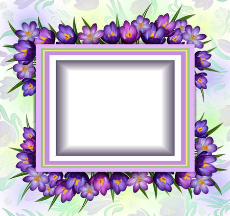 Illustration of greeting or invitation card template with crocus flower frame Illustration
