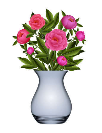 Illustration of bouquet from peony flowers in vase isolated