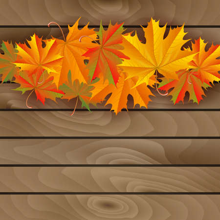 Illustration of colorful autumn maple leaves on wooden wall