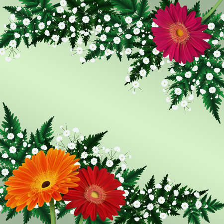 Illustration of greeting or invitation card template with gerbera daisy flowers, gypsophila and fern branches
