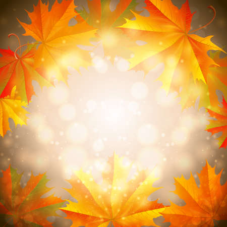 Illustration of colorful autumn maple leaves on bokeh pattern.