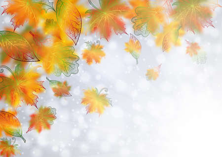 Illustration of colorful autumn maple leaves on glitter pattern.