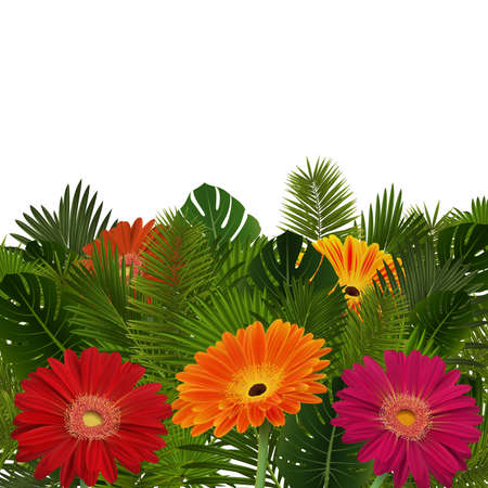 Illustration of greeting or invitation card template with gerbera daisy flowers and palm leaves isolated