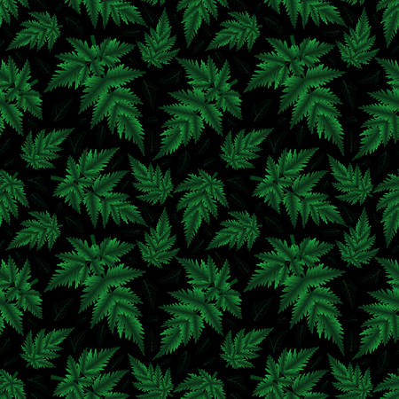 Illustration of seamless floral pattern with fern branches on black background  Illustration