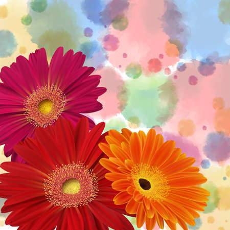 Illustration of greeting or invitation card template with gerbera daisy flowers and watercolor background  Illustration