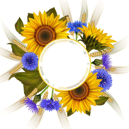 Illustration of floral card template with sunflowers, cornflowers, wheat ears and round banner isolated