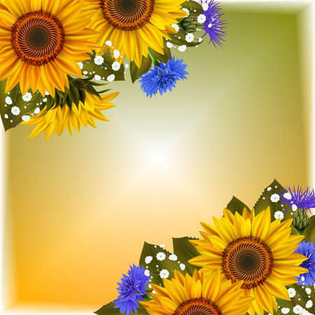 Illustration of floral card template with sunflowers, cornflowers, gypsophila flowers and colorful background