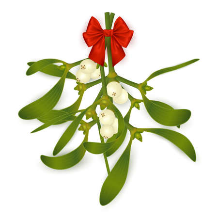 Illustration of hanging mistletoe sprigs with berries and red bow isolated 矢量图像