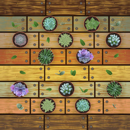 Illustration of floral card template with succulent plants in flowerpots, eucalyptus leaves and wood background