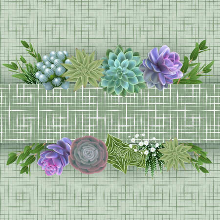 Illustration of floral card template with succulent plants, eucalyptus, gypsophila flowers, horizontal banner and cellular background
