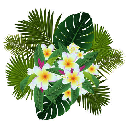 Illustration of tropical floral card template with plumeria flowers and palm leaves isolated