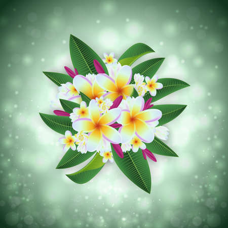 Illustration of tropical floral card template with plumeria flowers and glitter background