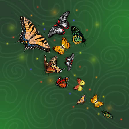 Illustration of swallowtail, silverspot, monarch, fritillary, morpho butterflies on abstract background