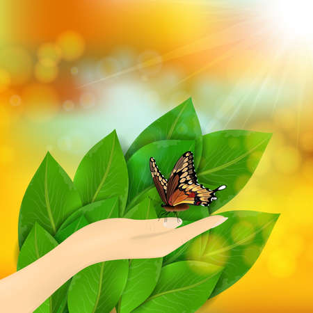 Illustration of green leaves, butterfly, hand and sunny sky background