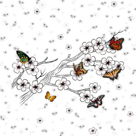 Illustration of pattern with hand drawn cherry blossom branches and colorful butterflies 矢量图像