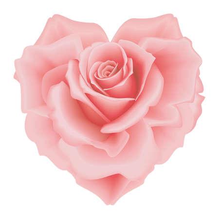 Isolierte schöne rosa Rose-Herz auf dem weißen Hintergrund Vektorgrafik