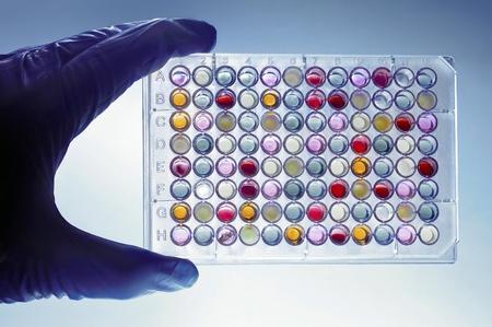tecnico laboratorio: Un t�cnico de laboratorio con un plato de 96 pozos con l�quidos de colores Foto de archivo