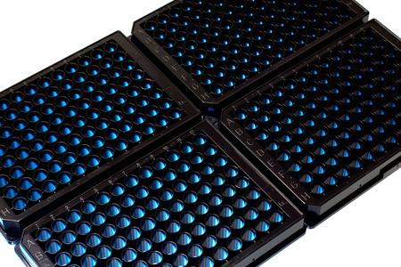 microplacas negras de fluorescencia iluminadas por una luz fluorescente Imagens