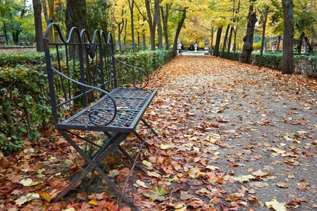 a park bench covered with autumn leaves photo