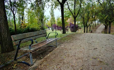 A lonely bench in the park Stock Photo - 11326154