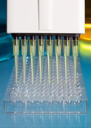 pipette depositing samples into a 96 well microplate Stock Photo - 14283390