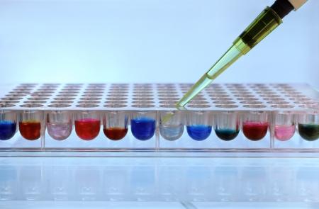 examenes de laboratorio: Depósito de reactivo de la pipeta en una placa de 96 pocillos Foto de archivo