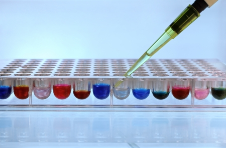 Depositing pipette reagent in a 96 well plate Stock Photo