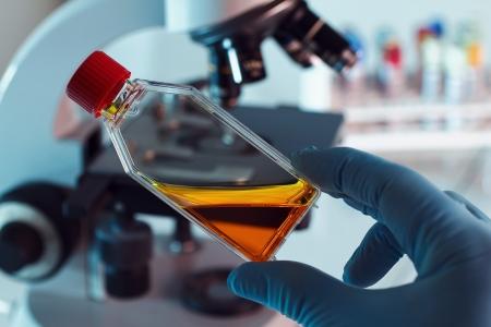 Scienziato in laboratorio con un pallone di coltura in mano e un microscopio e tubi in background Archivio Fotografico
