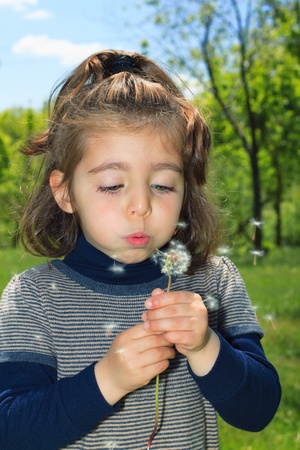 girl is blowing on dandelion in the field photo
