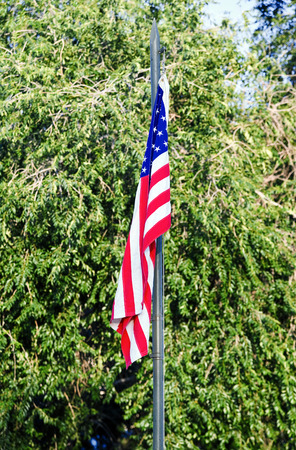 United States of America flag with trees in the background photo