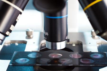 dettaglio di lenti del microscopio osservando una diapositiva con pozzetti dei campioni in laboratorio Archivio Fotografico
