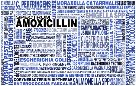 bacteriology: cloud of words and name tags bacteria species and microorganisms that may be treated with the antibiotic amoxicillin.  names of bacteria spectrum to amoxicillin big highlighted word