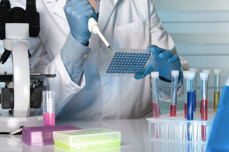Scientist in the lab holding a 96 well plate with samples for analysis  researcher pipetting samples in microplates in the laboratory Stock Photo