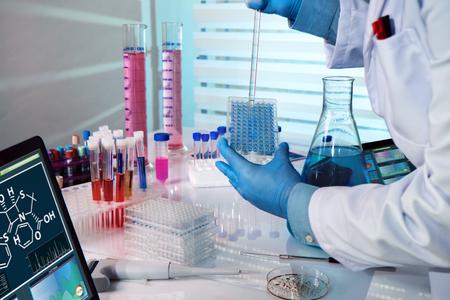 investigador que trabaja en un laboratorio de biotecnología / ingeniero bioquímico trabajar con microplacas en un experimento de laboratorio Foto de archivo