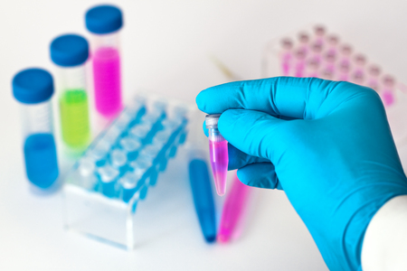 pcr: Hand of a scientist holding a sample in the laboratory  Researcher with a test tube