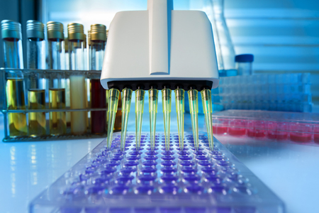 Multi channel pipette loading biological samples in microplate for test in the laboratory / Multichannel pipette load samples in pcr microplate with 96 wells