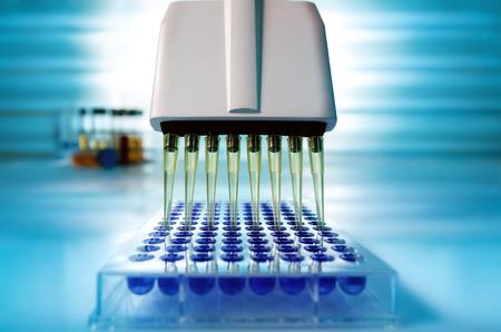 Pipetta multicanale che carica campioni in micropiastra pcr con 96 pozzetti / Pipetta multicanale che carica campioni biologici in micropiastra per test in laboratorio